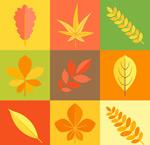 秋季叶子矢量