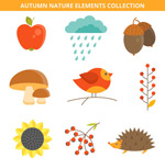 秋季自然元素
