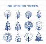 手绘树木草图