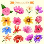 手绘花朵插画