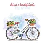 装满鲜花的单车