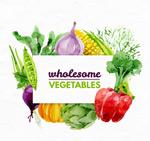 水彩绘健康蔬菜