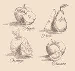 手绘水果与蔬菜