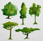 水彩绘树木