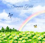 原野和彩虹风景