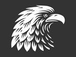 老鹰元素标志