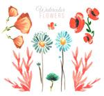 水彩绘花卉设计