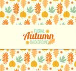 秋季落叶无缝背景