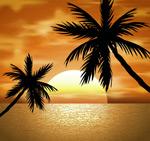 椰子树风景矢量