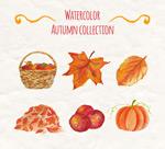 水彩绘秋季元素