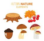 创意秋季植物