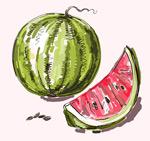 彩绘美味西瓜