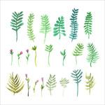 彩绘树叶和花卉