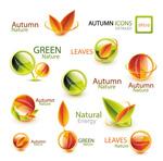 秋季自然主题图标