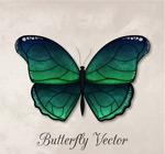 精美绿色蝴蝶