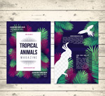 热带动物杂志内页