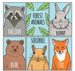 彩绘森林动物卡片