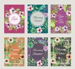 美丽夏日花卉卡片