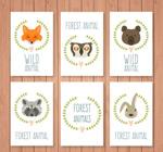 森林动物头像卡片