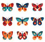 拼色蝴蝶设计