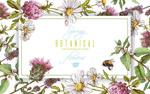 花卉和蜜蜂框架