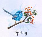 花枝上的蓝色鸟