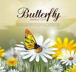 花丛采蜜的蝴蝶