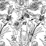 黑白手绘花鸟