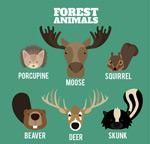 创意动物头像