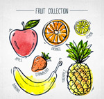 手绘彩色水果