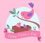 母亲节喂食的鸟