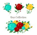 彩色玫瑰花和花束