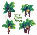 彩绘绿色棕榈树