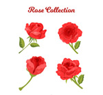 红色玫瑰花矢量