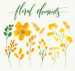 黄色花卉和叶子
