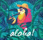喝椰汁的夏威夷鸟