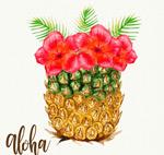 菠萝里的扶桑花