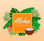 创意夏威夷框架