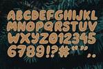 姜饼矢量字母