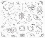 动植物海洋元素