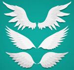 白色质感翅膀