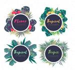 彩绘热带花卉框架