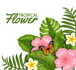 热带花卉和蝴蝶