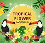 花卉和大嘴鸟