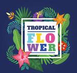 热带花卉框架