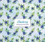蓝莓无缝背景