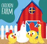 养鸡场鸡家庭