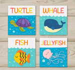 海洋生物卡片