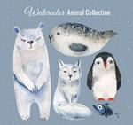 水彩绘北极动物