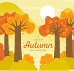 复古秋季树林风景